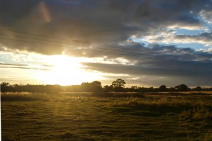 Sunset over paddock